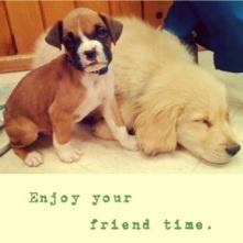 enjoy friend time